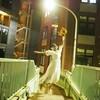 今年もあいつがやって来た!ハロウィンの渋谷で逝き遅れ花嫁ゾンビは婚カツをする。