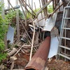 思い腰を上げる 整理した竹 I got the work started.