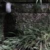 梅雨のある晴れた日 #1 -北鎌倉~鎌倉-