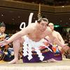 日馬富士引退までの経過に見る、「ヤクザ公益法人」日本相撲協会の姿について