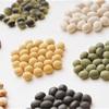 豆の歴史とは?