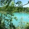 子連れで北海道・美瑛:青い池