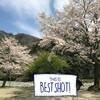 2019花見キャンプin青野原