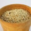 【雑穀の種類】アマランサスの魅力を余すところなく紹介!【幸せいっぱい】