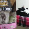 今日の黒猫モモ&白黒猫ナナの動画ー988