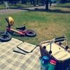週末ピクニックと父の日