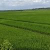 この故郷(くに)のための農業政策を