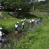 小学校・市内の川の野外学習へ(淡水編)