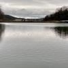 荒神谷池(岡山県勝央)