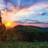 【総集編】マナウス旅行のまとめ!世界一のジャングル都市マナウスとアマゾン川ツアーを楽しむ!【ブラジル旅行記】【マナウス編】