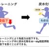 高強度トレーニングによる免疫低下には炭水化物が効果的