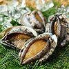 【三重】老舗ホテルの鮑ステーキと海女小屋で頂く素朴な貝料理