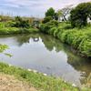 有馬の池(三重県熊野)