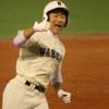 【発売日程】高校野球・秋季東京大会の前売券(準決勝・決勝)、発売日程・時間は10月1日(日)11時から
