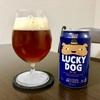 【チューリップグラス】新しくビール用のグラスを買ったのでご紹介!!【SPIEGELAU】