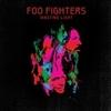 Wasting Light / Foo Fighters (2011/2016 ハイレゾ 192/24)