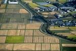 家庭菜園・市民農園の初心者のあなたが農園を借りることを決めたら、次は区画えらびです。