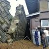 迷走台風5号、本州に接近した台風では最長寿