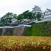 2016年最後の旅行は九州ふっこう割で長崎へ行ってきた【2016.11.18】