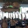 【NZ南島旅行】南島へ行く前に、ウェリントンへ!ウェリントンは空港が凄かった!!!