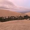 砂漠のオアシスでサンドバギー