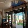 パリ11区「SIAMSA」シアムサ!クリエイティブでおしゃれなレストラン