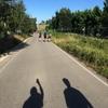 【スペイン/サンティアゴ・デ・コンポステーラへの道】カミーノ巡礼に挑戦して巡礼証明書をもらおう!!