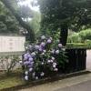 ワンコ連れ旅行 6/18(木) 〜6/19(金)