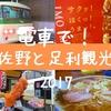 【佐野/足利観光】GWに休日おでかけパス利用!佐野ラーメンにいもフライ、名物しっかり食べてきた