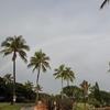 ハワイ旅行の思い出・・アウラニ4日目、朝はのんびりと散歩