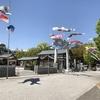広島護国神社にの鯉のぼり気持ち良さそうです。鯉城にぴったりです。