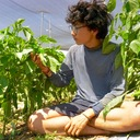 畑を見て、農業をして、野菜を食べて世界一周。