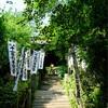 36.鎌倉 杉本寺 苔の石段