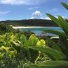 種子島に海砂採取事業が忍び寄る