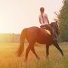 姉と馬に歌