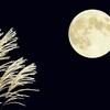 2017年10月4日🌛中秋の名月です。