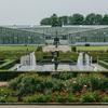 調布の神代植物公園が入園再開したようなので、整理券を取って行ってきた