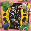 2019/3/30 次回企画展は「中南米のカエル」!!!!!!