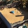 イネワラ堆肥BOXの整理整頓