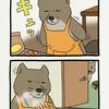(過去編)チベットスナギツネの砂岡さん「ケンカ中」