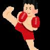 K-1 WORLD GP 2019 JAPAN~K-1 スーパー・バンタム級世界最強決定トーナメント~(in両国国技館)感想。【2019.6.30】❶(後編)2019.7.4
