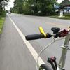 DAHON Routeで平均速度26.11km/h&猫ブログ