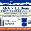 ANA ✖️ L.L.Bean