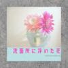 【洗面所に花】場所がない、置く場所なんて絶対ない。でも、花を飾りたいかも~のなんとなくの希望が叶う。丸く小さなフラワーベース。
