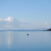 モンキーベイ旅行 ~初めて見る綺麗なマラウイ湖~