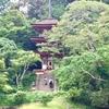 浄瑠璃寺 九体阿弥陀如来像から感じること