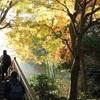 冬の北鎌倉