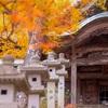 京都・南丹 - 西光寺の紅葉
