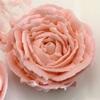 フラワーケーキ お花絞りの基本はバラ ローズの作り方(絞り方)