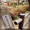 今週のRUNは神田川~玉川上水の兵庫橋で折り返し☆地図で途切れた川の謎を追う!